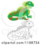 Cartoon Of A Cute Happy Lizard In Color And Black And White Outline Royalty Free Clipart by Alex Bannykh