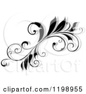 Clipart Of A Black And White Flourish With A Shadow 7 Royalty Free Vector Illustration