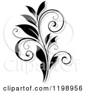 Clipart Of A Black And White Flourish With A Shadow 8 Royalty Free Vector Illustration