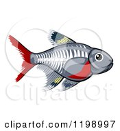 Cartoon Of A Cute X Ray Tetra Freshwater Fish Royalty Free Vector Clipart