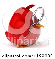 Clipart Of A 3d Chubby Red Bird Searching With A Magnifying Glass 2 Royalty Free CGI Illustration