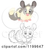 Cartoon Of A Black And White And Colored Cute Chinchilla Royalty Free Vector Clipart by Alex Bannykh