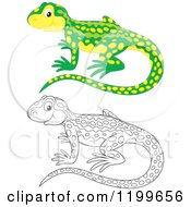 Cartoon Of A Black And White And Colored Cute Newt Royalty Free Vector Clipart by Alex Bannykh