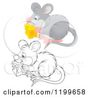 Cartoon Of A Colored And Line Art Cute Mouse Eating Cheese Royalty Free Clipart