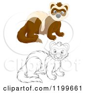 Cartoon Of A Colored And Line Art Cute Weasel Or Polecat Royalty Free Clipart by Alex Bannykh