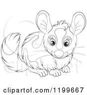 Cartoon Of A Black And White Cute Chinchilla Royalty Free Vector Clipart by Alex Bannykh