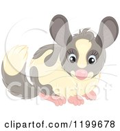 Cartoon Of A Cute Chinchilla Royalty Free Vector Clipart by Alex Bannykh