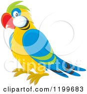 Cartoon Of A Cute Parrot Royalty Free Vector Clipart