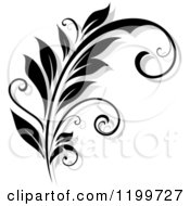 Clipart Of A Black And White Flourish With A Shadow 10 Royalty Free Vector Illustration