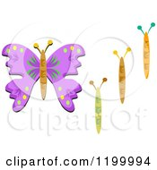 Butterfly Bodies And Purple Wings