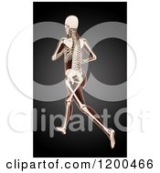 Clipart Of A 3d Running Female Medical Model With Visible Skeleton On Black Royalty Free CGI Illustration