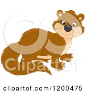 Cartoon Of A Cute Brown Otter Royalty Free Vector Clipart