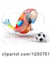 3d Macaw Parrot Playing Soccer 3