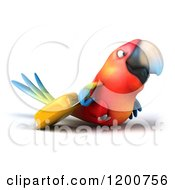 Clipart Of A 3d Traveling Macaw Parrot With A Rolling Suitcase Royalty Free CGI Illustration