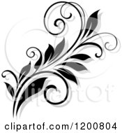 Clipart Of A Black And White Flourish With A Shadow 11 Royalty Free Vector Illustration
