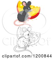 Cartoon Of An Outlined And Colored Cute Mouse With A Cheese Wedge Royalty Free Vector Clipart