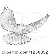 Clipart Of A Grey Dove Flying Royalty Free Vector Illustration