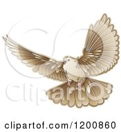 Clipart Of A Brown Dove Flying Royalty Free Vector Illustration
