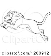 Cartoon Of A Black And White Outlined Leaping Lion Royalty Free Vector Clipart