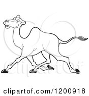 Cartoon Of A Black And White Outlined Running Camel Royalty Free Vector Clipart