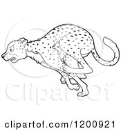Cartoon Of A Black And White Outlined Running Cheetah Royalty Free Vector Clipart