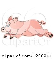 Cartoon Of A Pink Running Pig Royalty Free Vector Clipart by Lal Perera