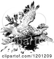 Clipart Of A Vintage Black And White Injured Turkey Bird Royalty Free Vector Illustration by Prawny Vintage