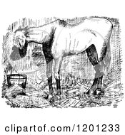 Clipart Of A Vintage Black And White Horse Overworked Mayor Royalty Free Vector Illustration