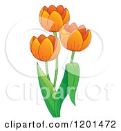 Cartoon Of A Tulip Plant With Orange Flowers Royalty Free Vector Clipart by visekart