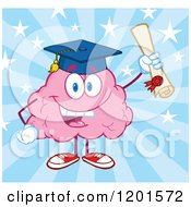 Cartoon Of A Pink Brain Mascot Graduate Holding Up A Diploma Over Blue Rays And Stars Royalty Free Vector Clipart by Hit Toon