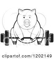 Clipart Of A Black And White Fit Pig Exercising And Lifting A Barbell Royalty Free Vector Illustration