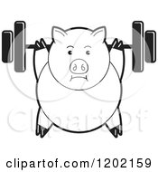 Clipart Of A Black And White Fit Pig Exercising With A Heavy Barbell Royalty Free Vector Illustration