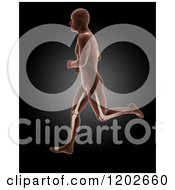 Clipart Of A 3d Profiled Running Xray Man With Visible Leg Bones On Black Royalty Free CGI Illustration
