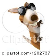 Clipart Of A 3d Aussie Kangaroo Wearing Sunglasses And Looking Around A Sign Royalty Free CGI Illustration