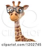 Clipart Of A 3d Happy Giraffe Wearing Glasses Over A Sign Royalty Free CGI Illustration