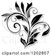 Clipart Of A Black And White Flourish With A Shadow 14 Royalty Free Vector Illustration