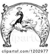 Clipart Of A Vintage Black And White Lost Princess Of Oz Peacock Royalty Free Vector Illustration