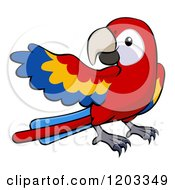 Cartoon Of A Cute Scarlet Macaw Presenting Royalty Free Vector Clipart