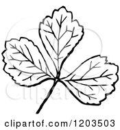 Vintage Black And White Leaf