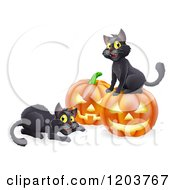 Happy Black Cats Playing By Halloween Pumpkins