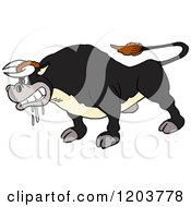 Cartoon Of A Mad Salivating Black Bull Royalty Free Vector Clipart by LaffToon