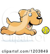 Cartoon Of A Cute Golden Retriever Puppy Chasing A Tennis Ball Royalty Free Vector Clipart by Cory Thoman
