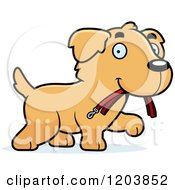 Cartoon Of A Cute Golden Retriever Puppy Carrying A Leash Royalty Free Vector Clipart