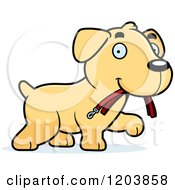 Cartoon Of A Cute Yellow Labrador Puppy Carrying A Leash Royalty Free Vector Clipart by Cory Thoman