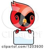 Cartoon Of A Cute Baby Cardinal Bird Over A Sign Royalty Free Vector Clipart by Cory Thoman