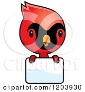 Cartoon Of A Cute Baby Cardinal Bird Over A Sign Royalty Free Vector Clipart