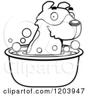 Cartoon Of A Black And White Cute Jack Russell Terrier Puppy Taking A Bath Royalty Free Vector Clipart