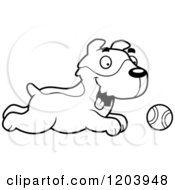 Cartoon Of A Black And White Cute Jack Russell Terrier Puppy Chasing A Tennis Ball Royalty Free Vector Clipart