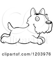 Cartoon Of A Black And White Cute Scottish Terrier Puppy Running Royalty Free Vector Clipart