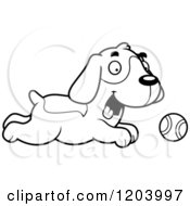 Cartoon Of A Black And White Cute Beagle Puppy Chasing A Tenni Ball Royalty Free Vector Clipart by Cory Thoman